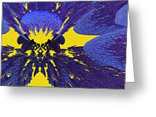 Pansy By Jammer Greeting Card