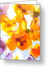 Pansy Flowers Greeting Card