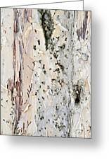 Paper Bark Astract Greeting Card