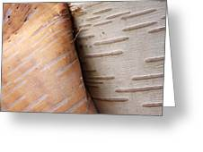 Paper Birch Bark Greeting Card