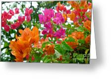 Paper Flower Greeting Card