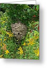 Paper Hornet Nest Greeting Card