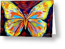 Papillon Colore Greeting Card