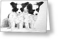 Papillon Puppies Greeting Card