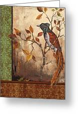 Paradise Flycatcher Greeting Card