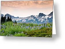 Paradise Meadows And The Tatoosh Range Greeting Card