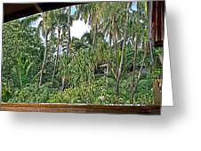Paradise Patio Greeting Card