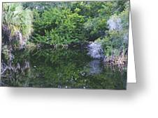 Paradise Pond Greeting Card