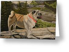 Paradise Pug Greeting Card