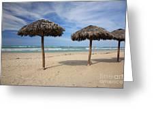 Parasols On Varadero Beach Greeting Card