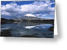 Parincota Lauca National Park Andes Greeting Card