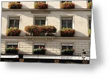 Paris Cartier Window Boxes - Paris Cartier Windows And Flower Boxes - Cartier Paris Building  Greeting Card