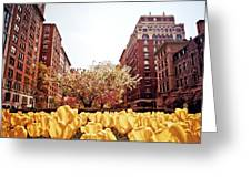 Park Avenue In The Spring  Greeting Card