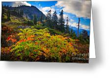 Park Butte Fall Color Greeting Card
