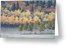 Park City Meadow Greeting Card