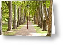 Park Footpath Greeting Card
