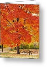 Park In Fall Greeting Card by Yoshiko Wootten