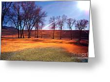 Park In Mcgill Near Ely Nv In The Evening Hours Greeting Card