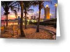 Park On The West Palm Beach Wateway Greeting Card