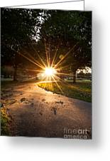 Park Sunburst Portrait Greeting Card