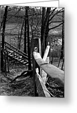 Park Trail Bw Greeting Card