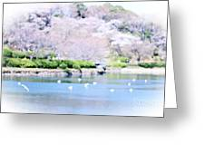 Park With Pond And Cherry Blossoms In Spring Greeting Card