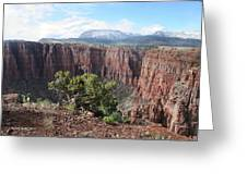 Parker Canyon In The Sierra Ancha Arizona Greeting Card