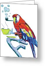 Parrot Cartoon Greeting Card