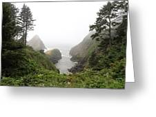 Parrot Rock In The Fog Greeting Card