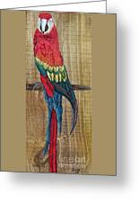 Parrot - Scarlet Macaw Greeting Card