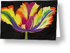 Parrot Tulip 2 Greeting Card