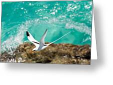 Parting Waves Greeting Card