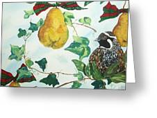 Partridge And  Pears  Greeting Card