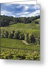 Party Clouds Over The Vineyards Greeting Card