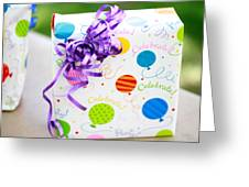 Party Time Greeting Card by Misty McClintick