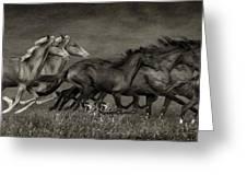 Paso Peruvian Horses On The Run Greeting Card