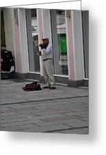 Passau Violinist Greeting Card