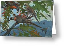 Passenger Pigeon Greeting Card