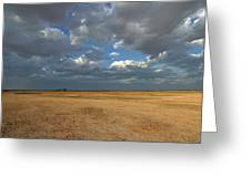 Passing Storm Greeting Card by Gordon  Grimwade