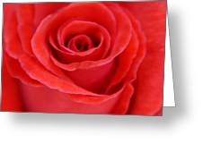 Passion Greeting Card by