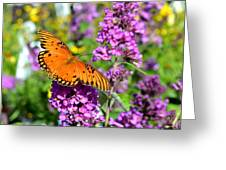 Passion Butterfly Greeting Card