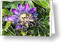 Passion Fruit Flower Greeting Card