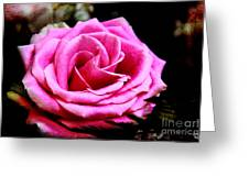 Passionate Rose Greeting Card