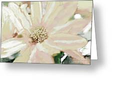 Pastel Daisy Photoart Greeting Card