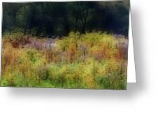 Pastel Field Greeting Card