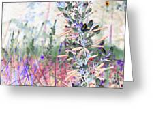 Pastel Floresence Greeting Card