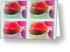 Pastel Pads Greeting Card