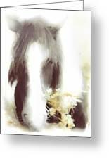 Pastel Pony Greeting Card