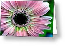 Pastel Power Greeting Card