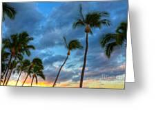 Pastel Tropical Sunrise Greeting Card